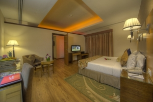 Executive suite room (2)