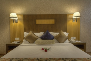 Executive suite room (4)