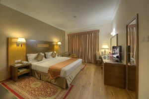 Executive suite room (5)