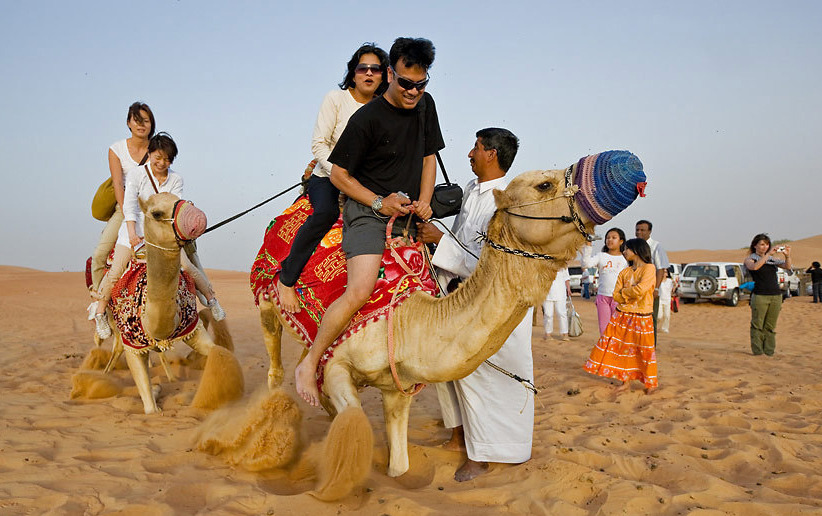 Camel Rides In Dubai Skiing and Camel Riding